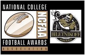 Image result for biletnikoff award