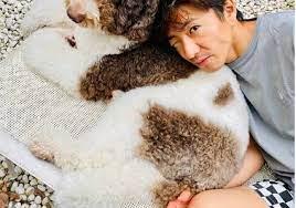 木村 拓哉 犬
