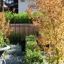 Small Picture Planting Garden Design Adelaide by Unearthed Landscaping SA
