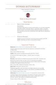 Developer Resume Examples Impressive Sharepoint Developer Resume Sample Goalgoodwinmetalsco