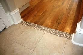 floor threshold transitions