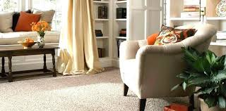 best rug material for family room carpet with pets odor stain furniture splendid