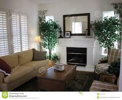 Nice Living Room Nice Living Room Royalty Free Stock Photography Image 1174127