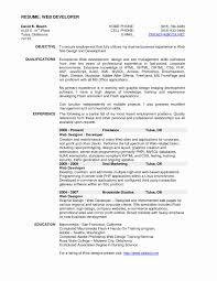 Film Programmer Sample Resume Easy Write Web Design Resume