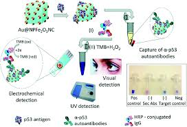 Superparamagnetic Nanoarchitectures For Disease Specific