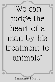 Dog Quote Animals Treatment Love Funny Humour Best Friend Losing