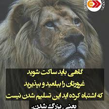 Image result for ‫اشعار تائب ابرسج‬‎