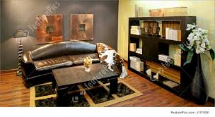 decoration furniture living room. Wonderful Decoration Large Size Of Living Roomnatural African Room Decor Ideas  Beautiful For Decoration Furniture