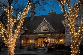 professional lighting and holiday decorating