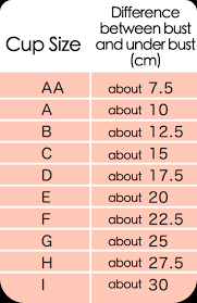 Described Bra And Cup Size Chart How To Measure Your Bra Size