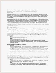 Value Statement Example For Resumes 59 Elegant Stocks Of Personal Statement Examples For Resume
