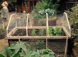 Raised Bed Gardening The Real Dirt Blog Anr Blogs