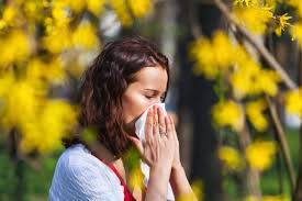 Marijuana allergy: Common symptoms and treatments | The GrowthOp