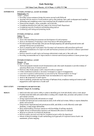 Intern Internal Audit Resume Samples Velvet Jobs