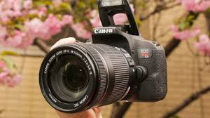 Canon Dslr Camera Comparison Chart 2017 Best Dslr Cameras For Beginners In 2019 Cnet