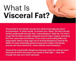 Visceral Fat Chart Way Of Life September 2017