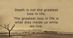 Loss Of Life Quotes Cool Greatest Loss In Life Quotes