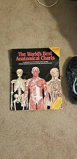 World S Best Anatomical Charts The Worlds Best Anatomical Charts By Anatomical Chart