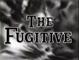 Image result for fugitive