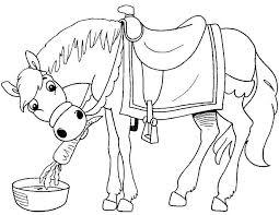 Kleurennu Het Paard Van Sinterklaas Kleurplaten