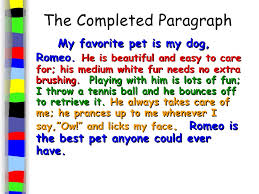 write a paragraph about your favorite animal my favorite animal dog essay composition paragraph note