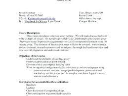 Discussion Essay Format Proper College Essay Format Discussion Paper