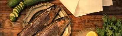 Fish Seafood Calories Calorie Chart