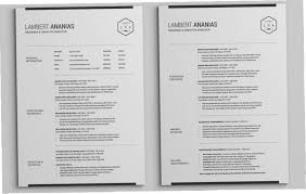 2 Page Resume Format Unique Two Pages Resume Format 288RPC 28 Page Resume Template Resume Format