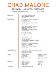 Interior Designer Resume Example Graphic Designer Description For