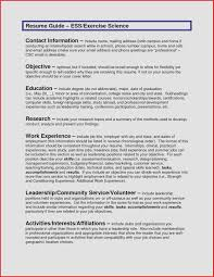 job search objective examples resume objective sample davecarter me