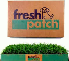 dogs bathroom grass. fresh patch disposable dog potty with real grass - as seen on shark tank dogs bathroom