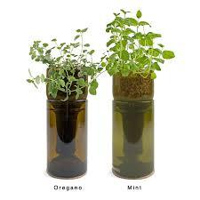 ... Indoor Herb Garden Planters Home Decor Wonderful Pictures Inspirations  20169 3 1200px Growbottle Kit Wine Bottle ...