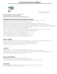 Musician Resume Example Magnificent Music Producer Resume Sample Dewdrops