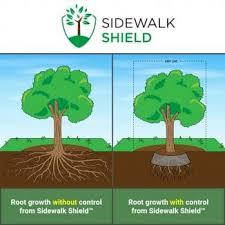 Tree Root Size Chart Tree Root Barrier Sidewalk Shield