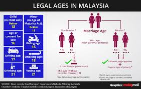- To Aide Malaysia Voting Age Lowering Save Siang's 18 I3investor Backs Kit