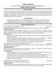 Resume Financial Analyst Senior Sample Of A Executive Summary