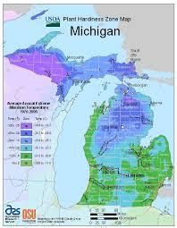 Michigan Vegetable Planting Calendar Urban Farmer Seeds