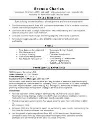 Sales Director Resume Sample Monster Throughout Resume Examples