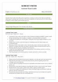 Team Leader Resume Warehouse Lead Resume Team Lead Resume Sample