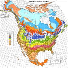 understanding world hardiness zones – plant hardiness zones in