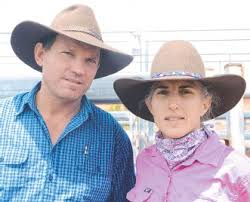Cattle confidence low - PressReader