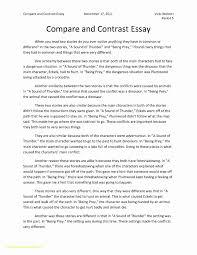 paragraph length essay lesson