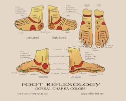 Top Of Foot Reflex Chart Reflexology Charts Northern Nevada Reflexology