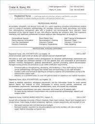 Nursing Student Resume Examples Resume Example