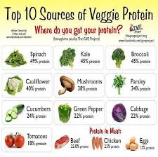 Top 10 Sources Of Veggie Protein High Protein Vegetables