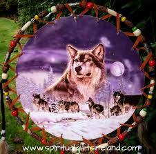 native american dreamcatcher wolf. Unique Dreamcatcher Native American Wolf Dreamcatcher Extra Large 3 Ring Lone In W
