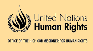 Image result for the United Nations Commission on Human Rights