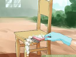 image titled remove mold from wood furniture step 9