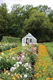 pin on gardening inspiration