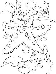 Small Picture Starfish Starfish and the Coral Reef Coloring Page Coloring